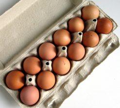 Carton of Medium Size Eggs