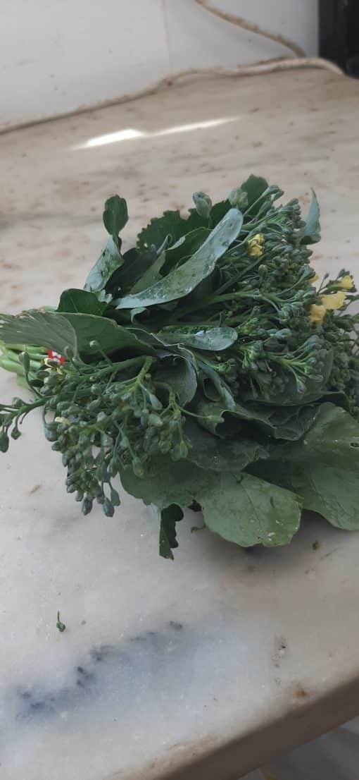 Sprouting Broccoli Bundles