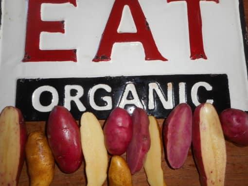 fingerling mix of potatoes