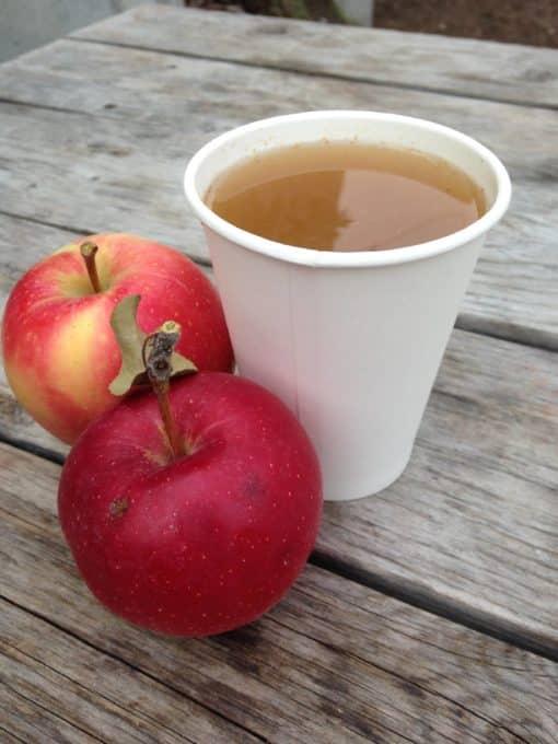 apple chai tonic