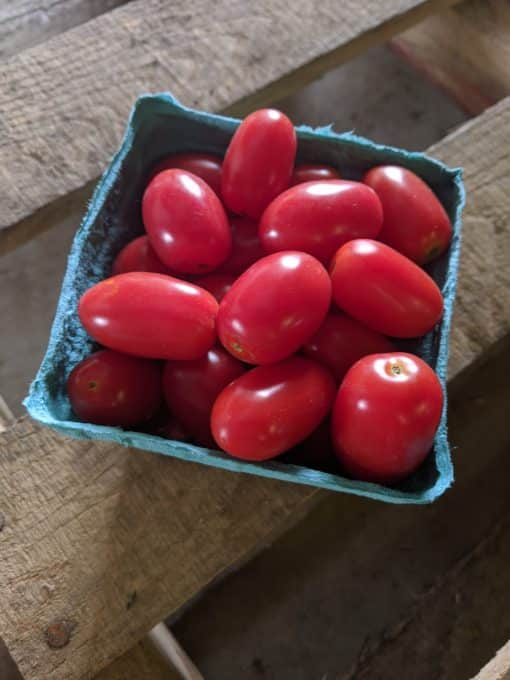 Red Grape Tomatoes