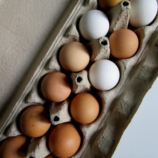 carton of small eggs