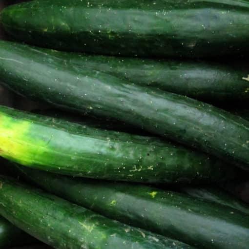 tasty asian jade cucumber