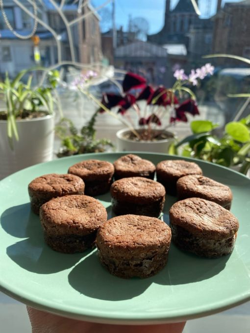 mini brownies in the city