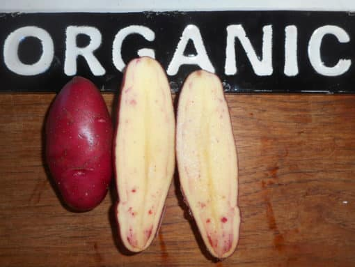 French Fingerling-Organic-1 quart Red skin small to medium size. Waxy texture with a nutty buttery flavour